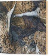 Driftwood Canyon II Wood Print