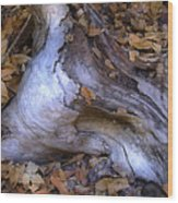 Driftwood In Lahonda Wood Print