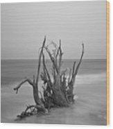Driftwood Infrared 60 Wood Print