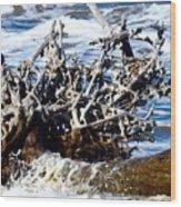 Driftwood Lace Wood Print