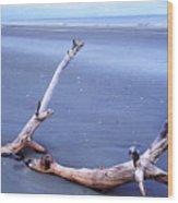 Driftwood Little St Simons Island Wood Print by Thomas R Fletcher