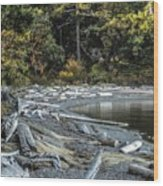 Driftwood On The Beach Sucia Island Wood Print