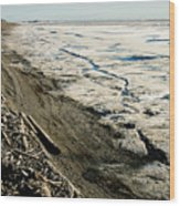 Driftwood On The Frozen Arctic Coast Wood Print