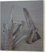 Driftwood Reaches Wood Print