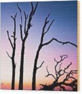 Driftwood Sunrise Wood Print