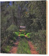 Driveway To Home Wood Print