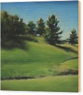 Driving By A Michigan Meadow Wood Print