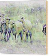 Driving Sheep Wood Print