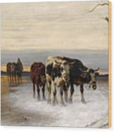 Driving The Herd Home In Wintry Landscape Wood Print