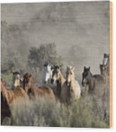 Driving The Horses Wood Print