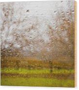 Droplets I Wood Print by Derek Selander