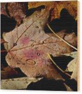 Droplets On Fallen Leaves Wood Print