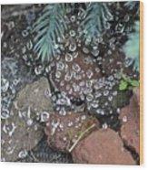 Droplets Over Web Wood Print