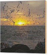Drops, Sun And Sea Wood Print