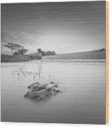 Drowning Wood Print