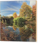 Drummond Garden Reflections Wood Print