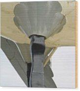 Drumstick Wood Print
