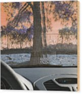 Drunk Drivers Last Mistake Wood Print