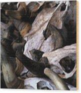 Dry As Bones Wood Print