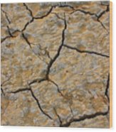 Dry Cracked Lake Bed Wood Print