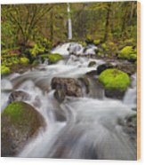 Dry Creek Falls In Spring Wood Print