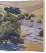 Dry Creek Wood Print