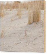Dry Dune Grass Plants Wood Print