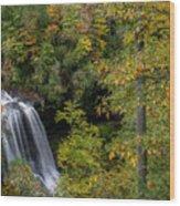 Dry Falls. Wood Print