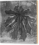 Dry Leaf Collection Bnw 1 Wood Print
