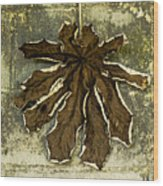 Dry Leaf Collection Natural Wood Print