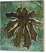 Dry Leaf Collection Wall Wood Print