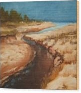 Dry River Bed Wood Print