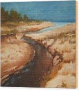 Dry River Bed Wood Print by Nellie Visser