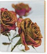 Dry Roses Wood Print