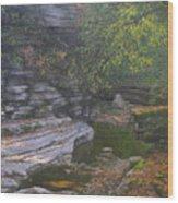 Dry September Wood Print