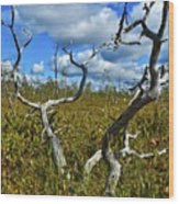 Dry Tree Wood Print