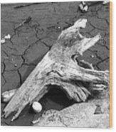 Dry Wood On Barren Land Wood Print