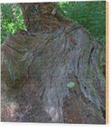 Dsc_0033 Web Wood Print