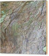 Dsc_0034 Web Wood Print