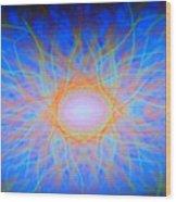 Dsc01648 Wood Print
