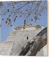 Dsc01958 Wood Print