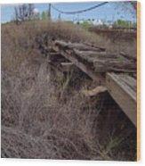 Dsc02077e Wood Print