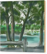 Dubois Park Lagoon Wood Print