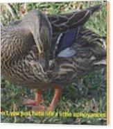 Duck Annoyances Wood Print by Rana Adamchick
