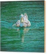 Duck - C Wood Print