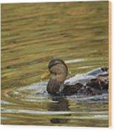 Duck Dip Wood Print