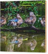 Duck Duck Duck Duck Wood Print
