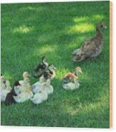 Duck Family Wood Print
