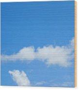 Duck In The Sky Wood Print
