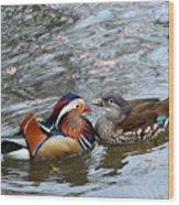 Duck Love Wood Print